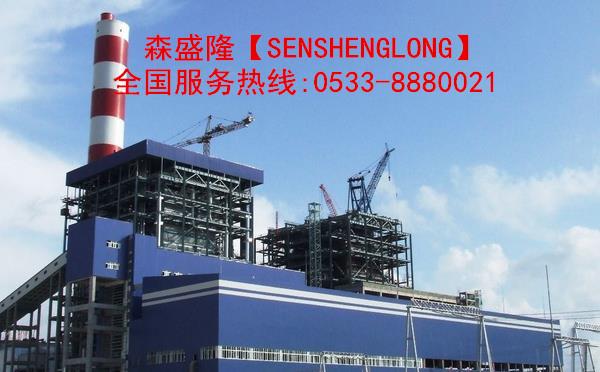 大庆电厂循环水阻垢剂应用实例