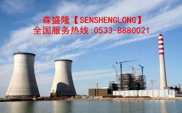 大庆电厂循环水阻垢剂SS715产品应用